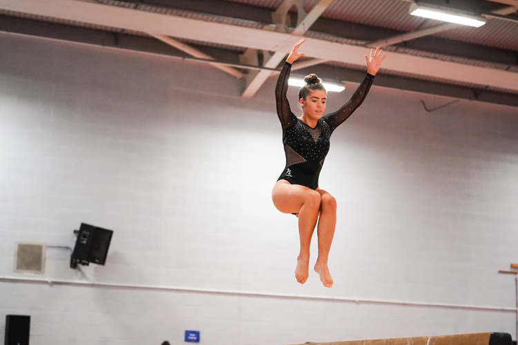 British titles decided at the 2019 Disability Artistic Championships