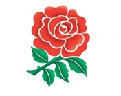 England National Assistant Coach (WAG) - Job Vacancy